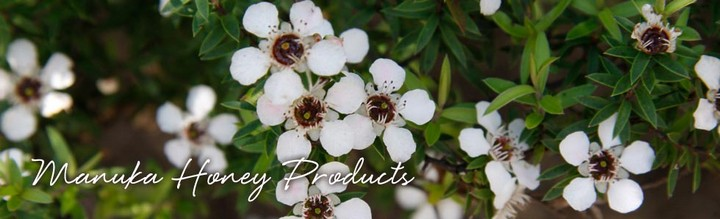 Manuka Honey Products